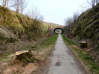 The trees have been cut down alongside the Tissington Trail near Alsop En Le Dale Station