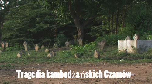 Tragedia kambod¿a?skich Czamów / Cham (2010) PL.TVRip.XviD / Lektor PL