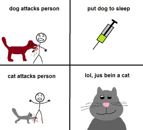 Dog attacks person. Put dog to sleep. Cat attacks person. LOL, jus' bein' a cat.