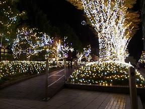新宿サザンテラス小道のクリスマスイルミネーション