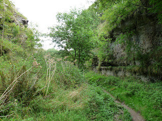 Upper Lathkill Dale