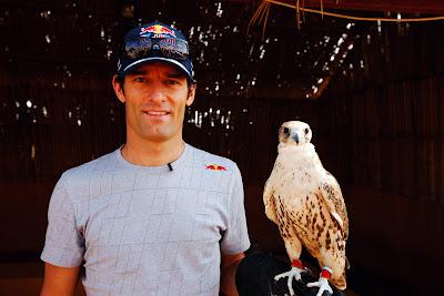 Марк Уэббер и ручной сокол перед Гран-при Абу-Даби 2011