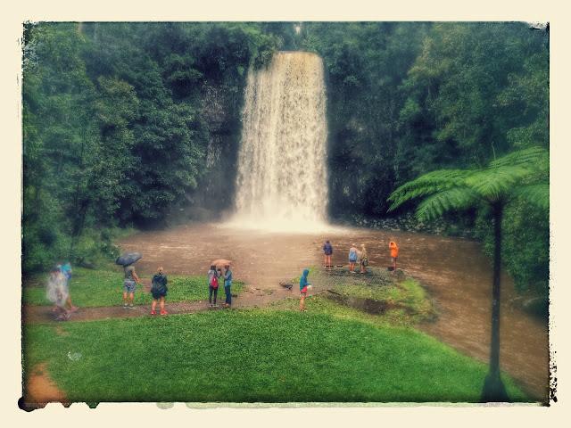 Millaa Milla Waterfalls of Australia