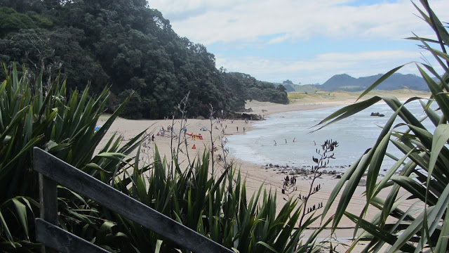 Hot Water Beach on the Coromandel Peninsula.
