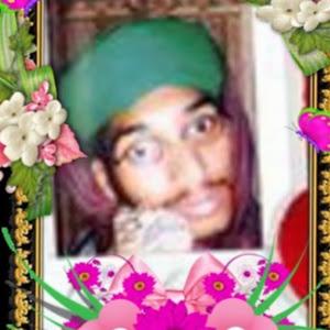 sahibzada <b>qari arshad</b> mehmood hassaan - photo