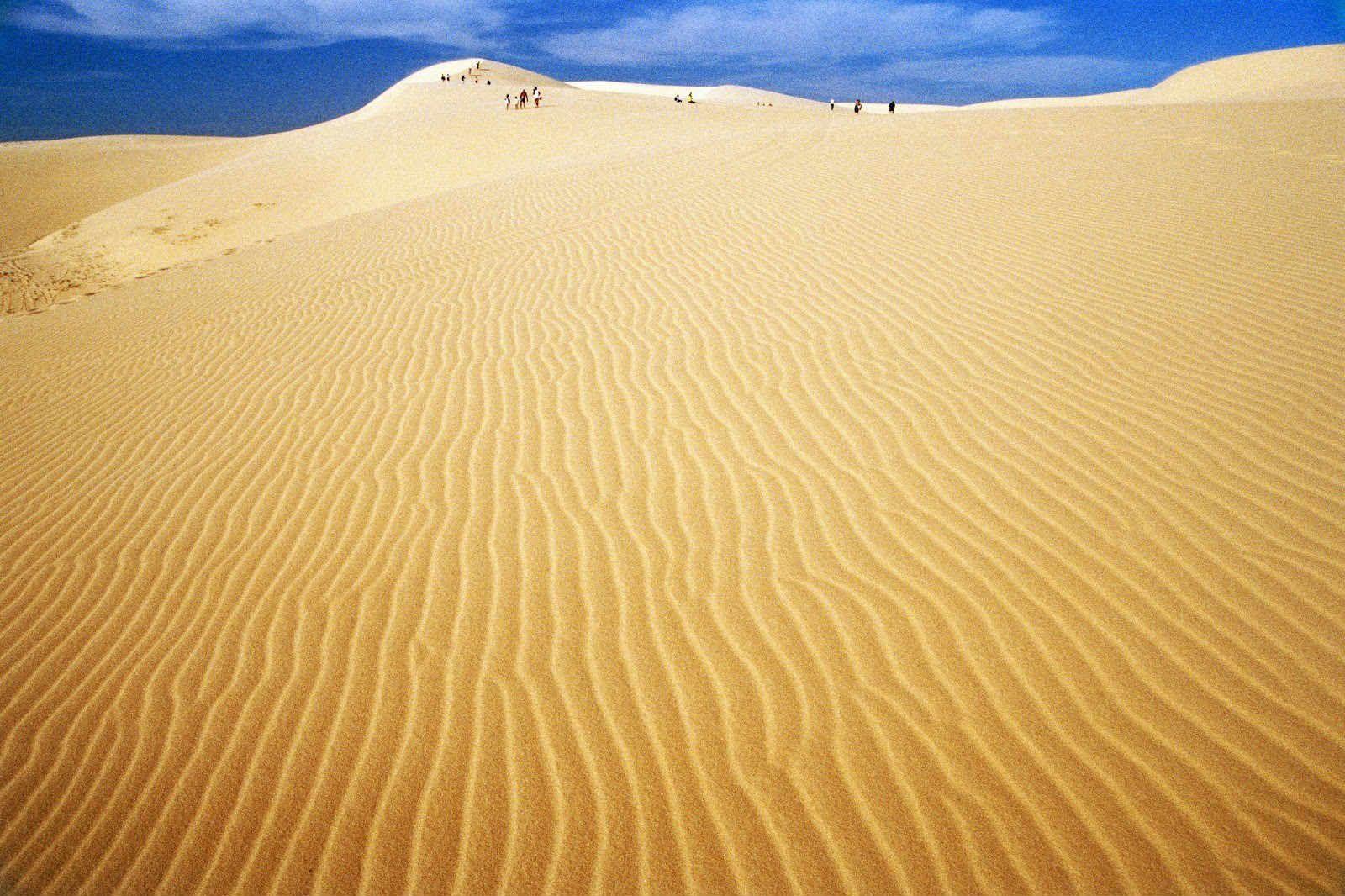 Ảnh bãi cát hình sóng đẹp