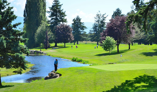 Chilliwack Golf Club, 41894 Yale Rd, Chilliwack, BC V2R 4J3, Canada, Golf Club, state British Columbia