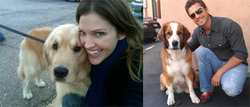 Tricia Helfer and Eric Winter with dogs