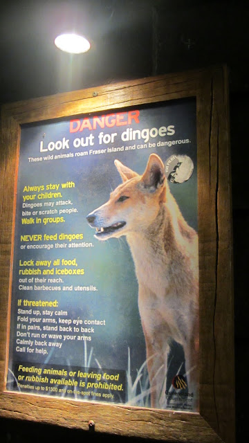 One of the many signs found around the island warning visitors about dingoes.
