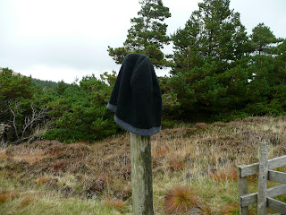 Who's lost a hat?