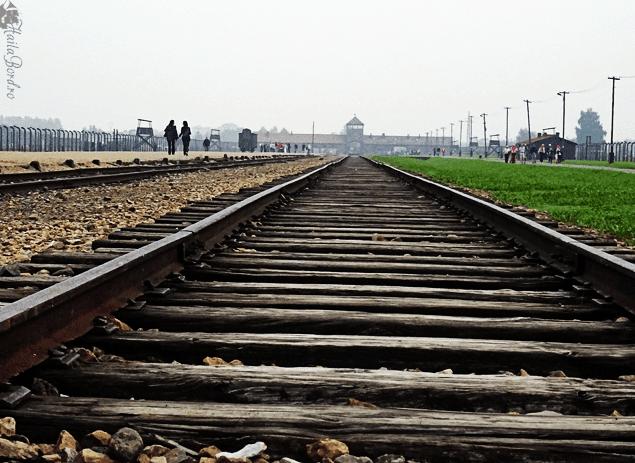 auschwitz II rails