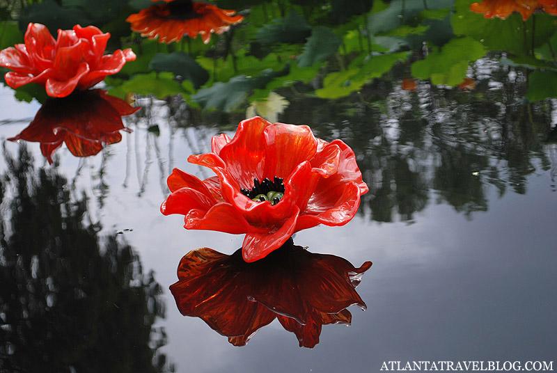 Валентинки - цветы Джорджии
