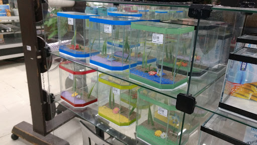 Zimmer - O Shopping dos Animais, R. Vig. José Inácio, 107 - Centro, Porto Alegre - RS, 90020-100, Brasil, Loja_de_animais, estado Rio Grande do Sul