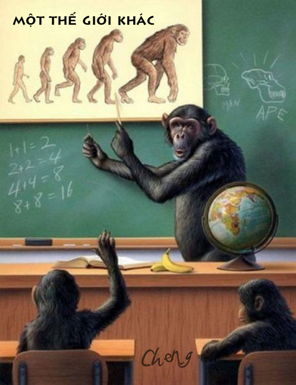 Ảnh chế lớp học của Khỉ