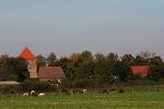 Pferdekoppel und Kirche
