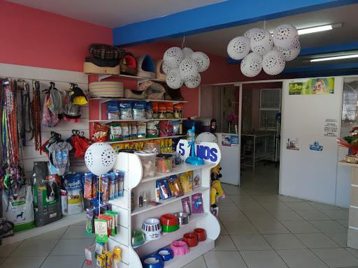 Toca Dos Bichos Pet Shop, 650, Av. Irineu Bornhausen, 532 - Palmital, Chapecó - SC, Brasil, Loja_de_animais, estado Santa Catarina