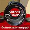 Cesare Photography