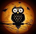 gufo_halloween