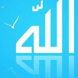 Abdallah Mamun review