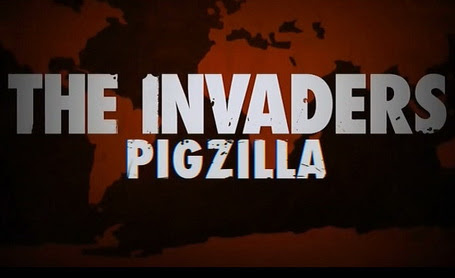 Naje¼d¼cy: Zdzicza³e ¶winie / Invaders: Pigzilla (2010) PL.TVRip.x264 / Lektor PL