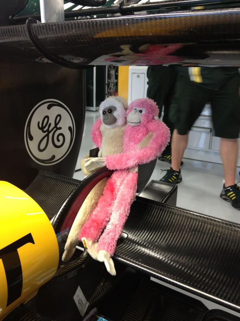 Caterham и обезьянки на заднем крыле на Гран-при Великобритании 2012
