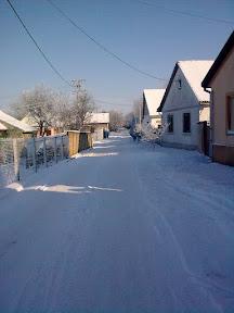 Ловћенац зими