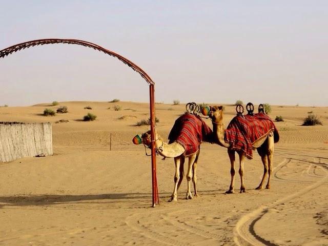 Miss Happyfeet Dubai Desert Safari
