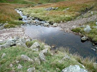 An Infant River Calder