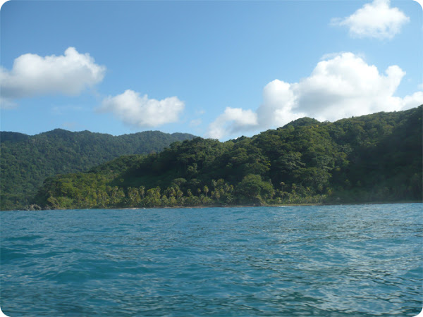 Paraje entre Puerto Obaldía y Capurganá