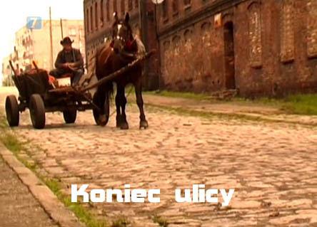 Koniec ulicy (2005) PL.TVRip.XviD / Lektor PL