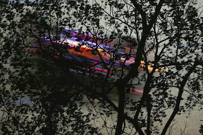 Себастьян Феттель на Red Bull сквозь деревья на Гран-при Сингапура 2013