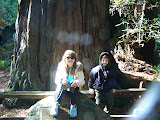 Meredith and Jack, Muir Woods, California