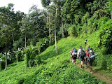 The Kokoda And Black Cat Trails