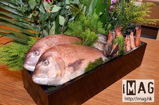 今次的新菜式都使用不少新鮮食材