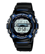 Casio Standard : MTP-1317D