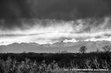 Panorami del Monferrato  – fotografia di Vittorio Ubertone
