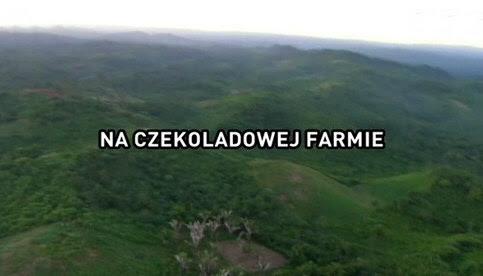 Na czekoladowej farmie / The Chocolate Farmer (2010) PL.TVRip.XviD / Lektor PL