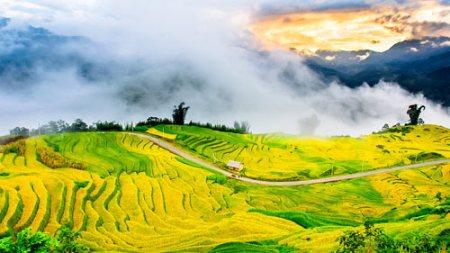 Những bài thơ hay viết về miền núi Tây Bắc nước ta