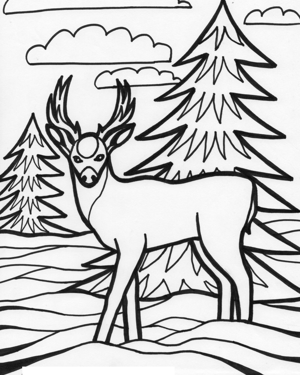 Coloring pages Wildlife 222 coloring pages Edupics - free wild animal coloring pages