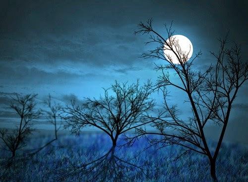 Ảnh trăng đêm đông