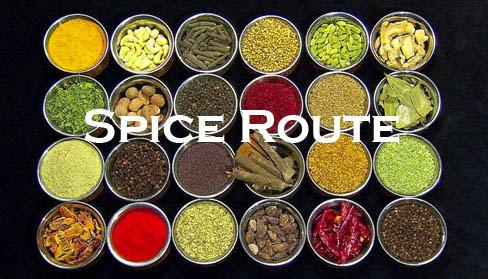 Korzenny szlak / Spice Route (2008) PL.TVRip.XviD / Lektor PL