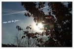 http://lh4.googleusercontent.com/-Z3GDmv5cfm4/TsFsgy6_ZlI/AAAAAAAALZg/OHh9Z8c60wQ/s150/2011-11-131.jpg