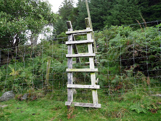 The stile over to the forestry track