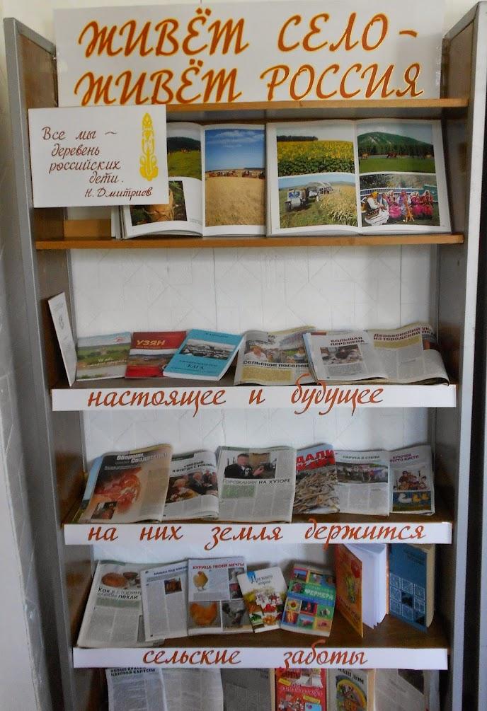 книжные выставки в библиотеки картинки
