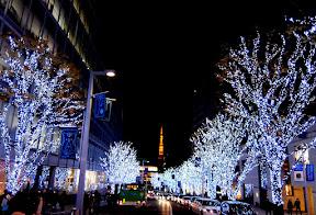 六本木ヒルズ・けやき坂のクリスマスイルミネーション2014