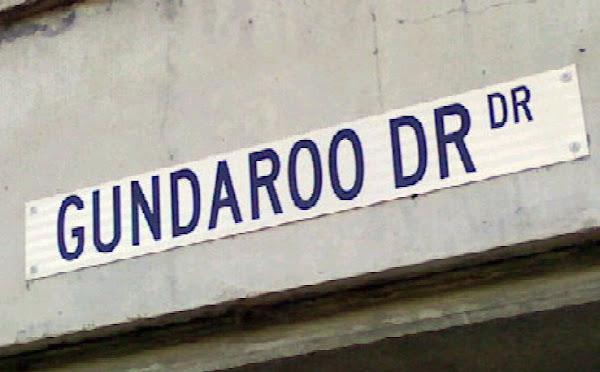 dr dr