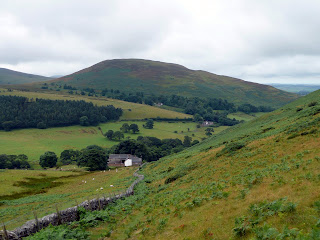 Ling Fell again from path to Sale Fell