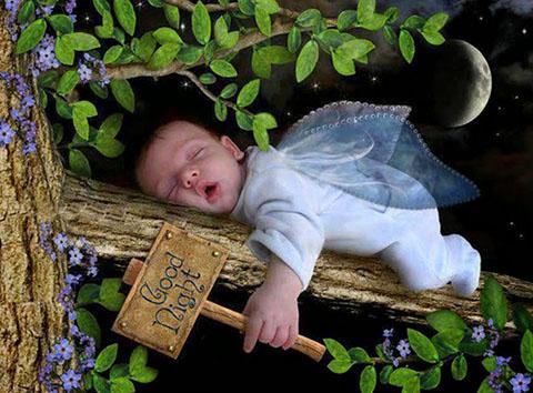 Ảnh chúc ngủ ngon dễ thương
