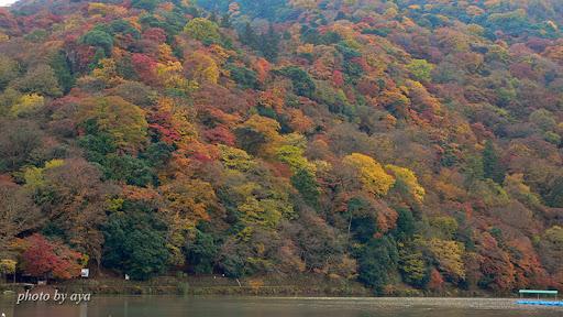 嵐山の紅葉2