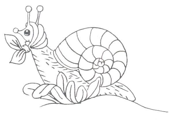 Coloriage Baleine Hugo Lescargot.Dessin A Colorier Escargot